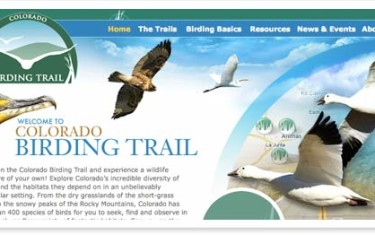 Colorado Birding Trail Website
