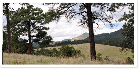 Betasso Preserve Near Boulder, Colorado
