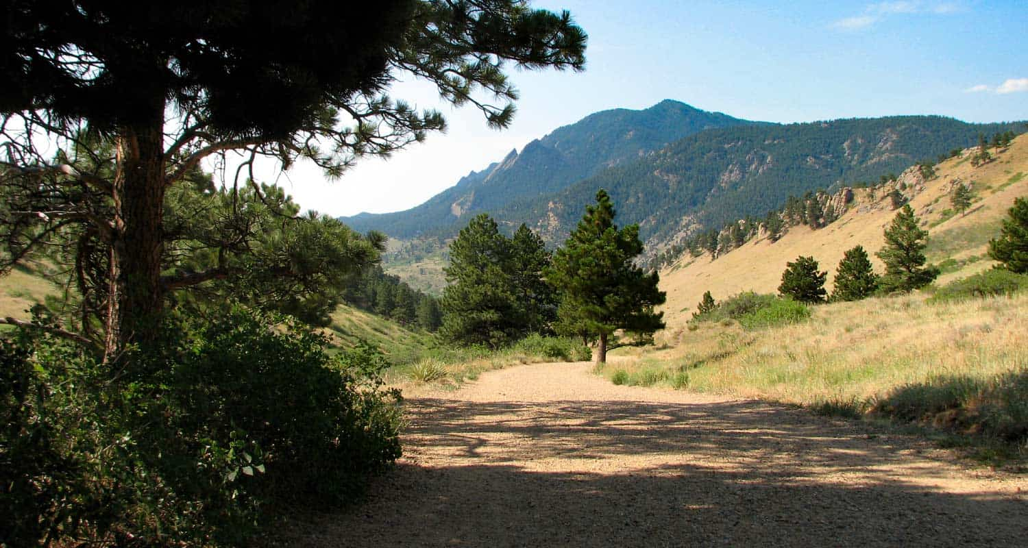Dog Friendly Hikes Near Castle Rock