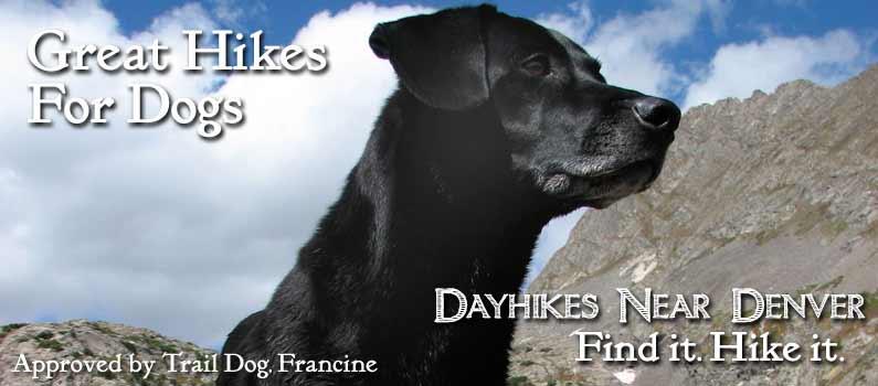 slide_dog_hikes_colorado