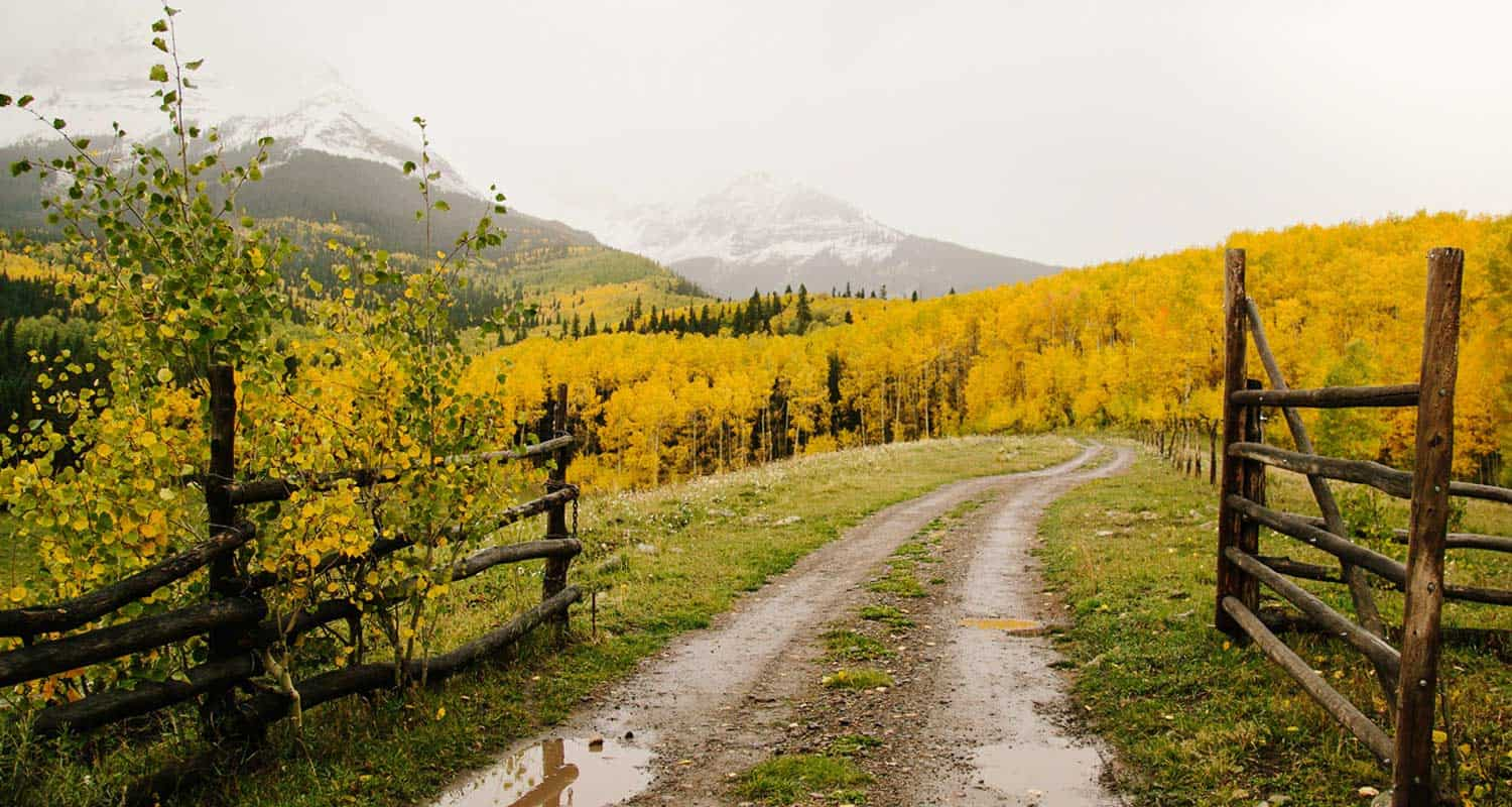 Fall Hiking Trails Near Denver Dirt road with aspen trees in yellows and oranges