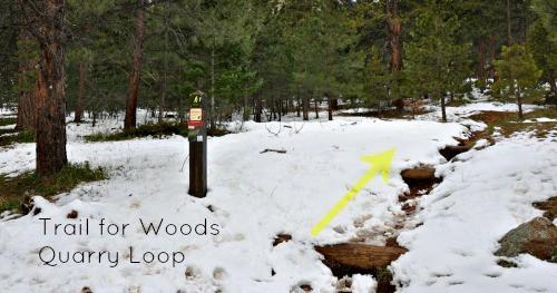 Enchanted Mesa Boulder Colorado Woods Quarry trail