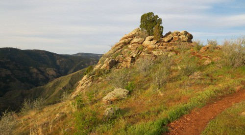 Mount Galbraith rock outcrop