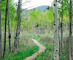 North Table Mountain Trail Hike Golden Colorado