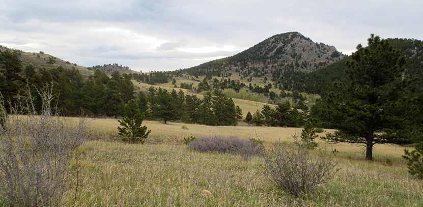 Centennial Cone Hike 01