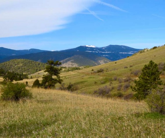 00_header_centennial_cone_elk_range-trail_new