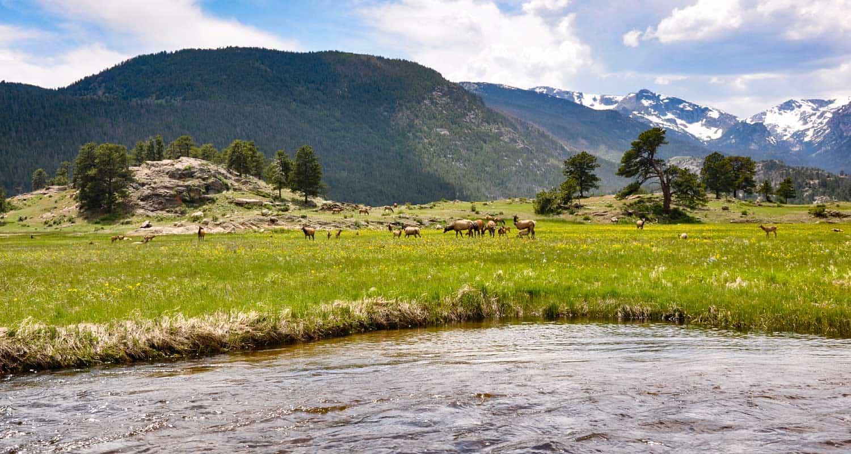 Hiking Trails Near Estes Park Colorado Day Hikes Near