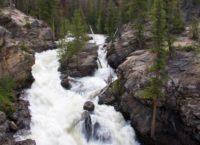 Adams Falls in Rocky Mountain National Park