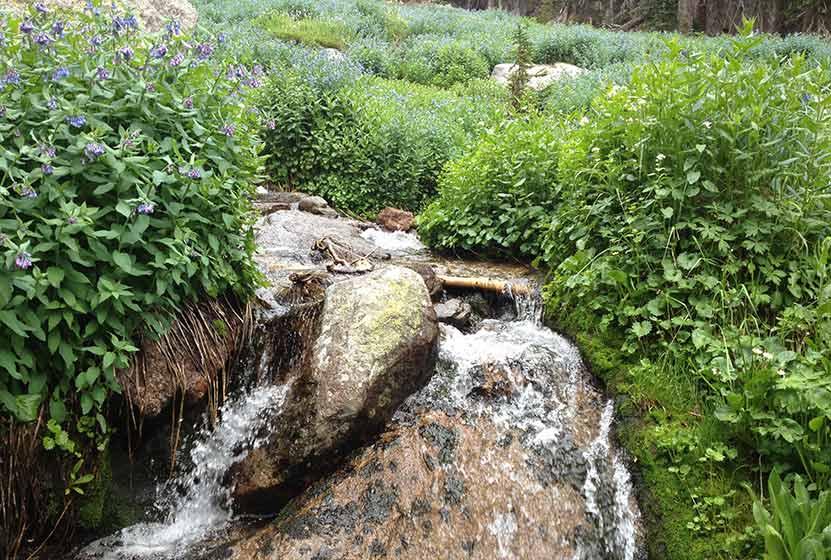 fan falls rocky mountain national park stream