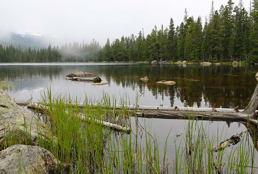 finch lake rocky mountain national park