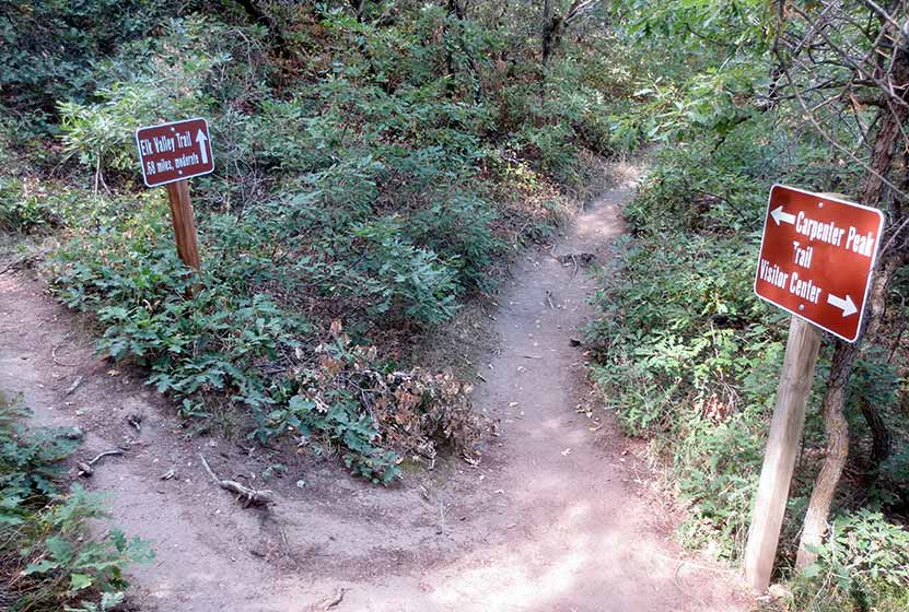 04-carpenter-peak-roxborough-state-park-trail-split-with-elk-valley-trail