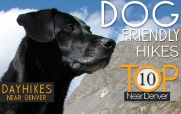 Top 10 Dog Friendly Hikes Near Denver header