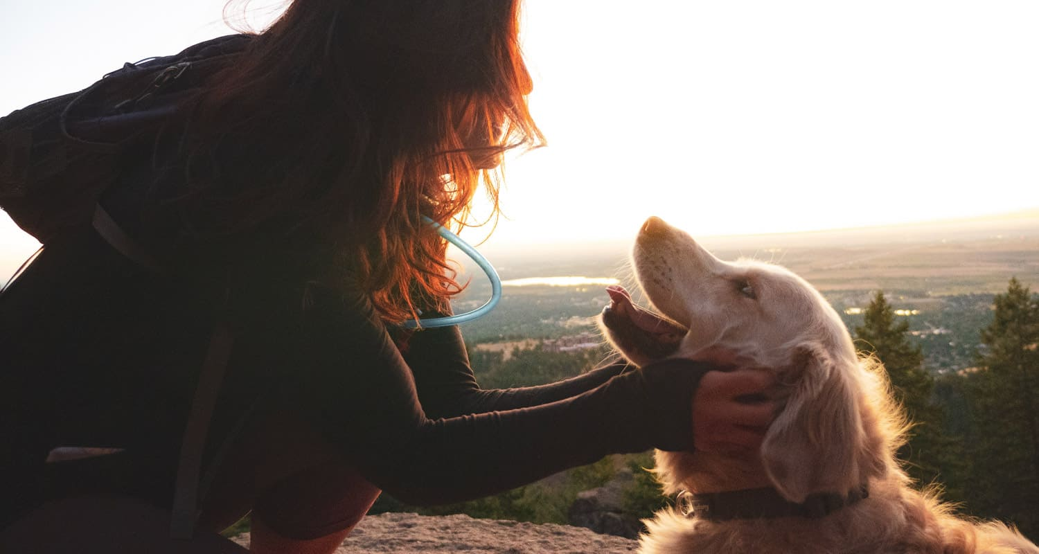 hiker with dog at sunrise top 10 dog friendly hikes near denver