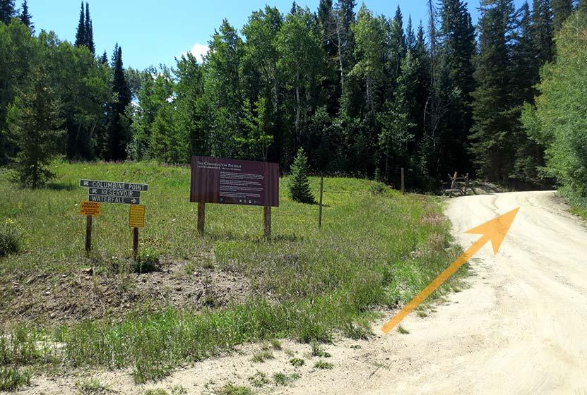 dirt road leading to pole creek falls trailhead
