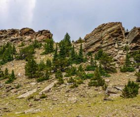 rock formations and trees near on tundra near the summit of chief mountain colorado