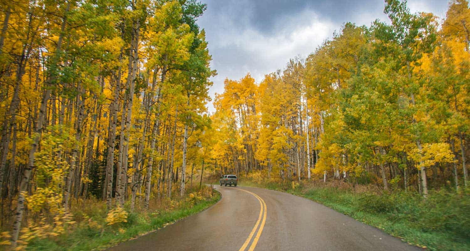 truck driving on scenic highway in colorado with aspen trees in the fall season of the year