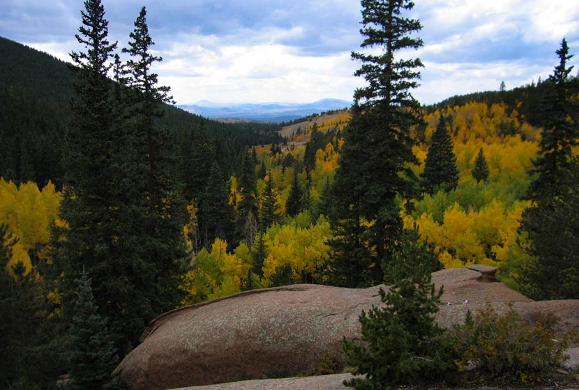 aspens and evergreens on the west side of pikes peak near pancake rocks and horsethief falls