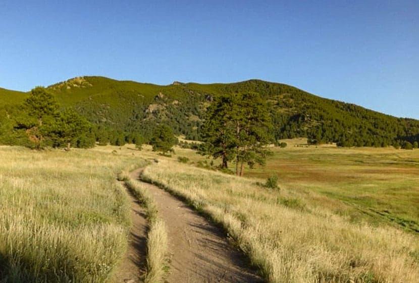 bergen peak in background with green elk meadows in foreground on bergen peak hike near evergreen colorado