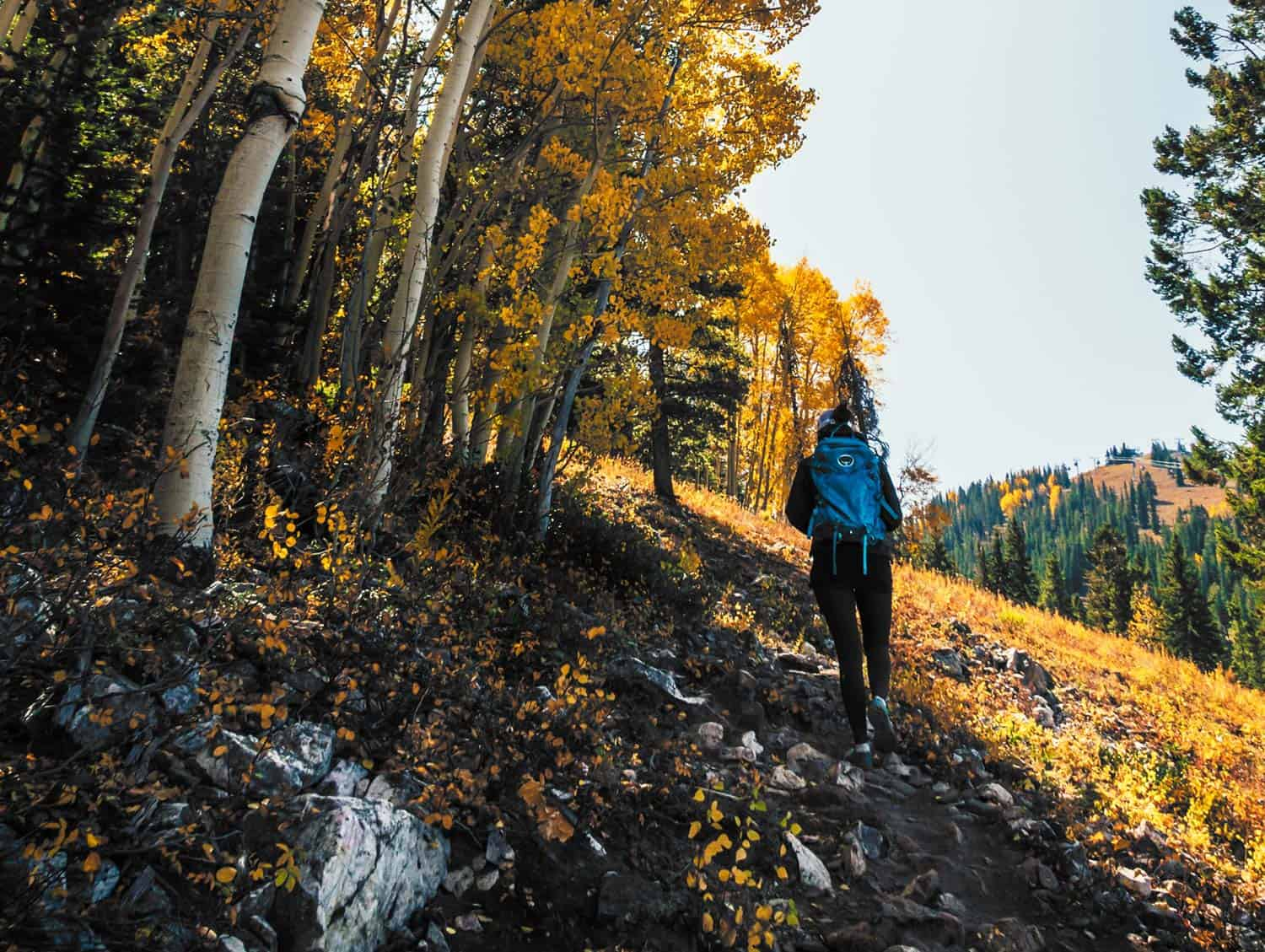 colorado hiker hiking on durable surface with mountainside and aspen trees tips for hiking on muddy trails
