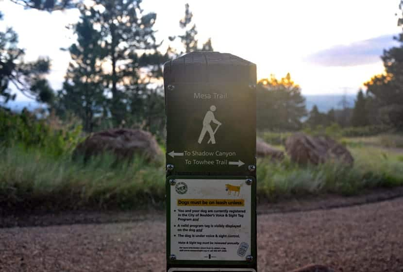 trail signs for mesa trail
