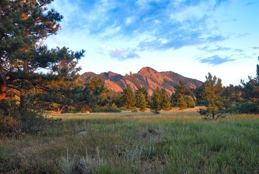 Bear Peak in background and meadow in foreground along mesa trail near boulder colorado