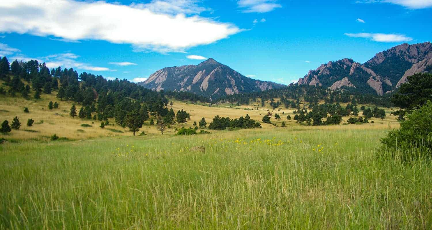 view across meadow near NCAR in Boulder of flatirons and chautauqua park along hiking trail