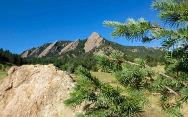 flatirons in boulder colorado along hike with spruce tree in foreground
