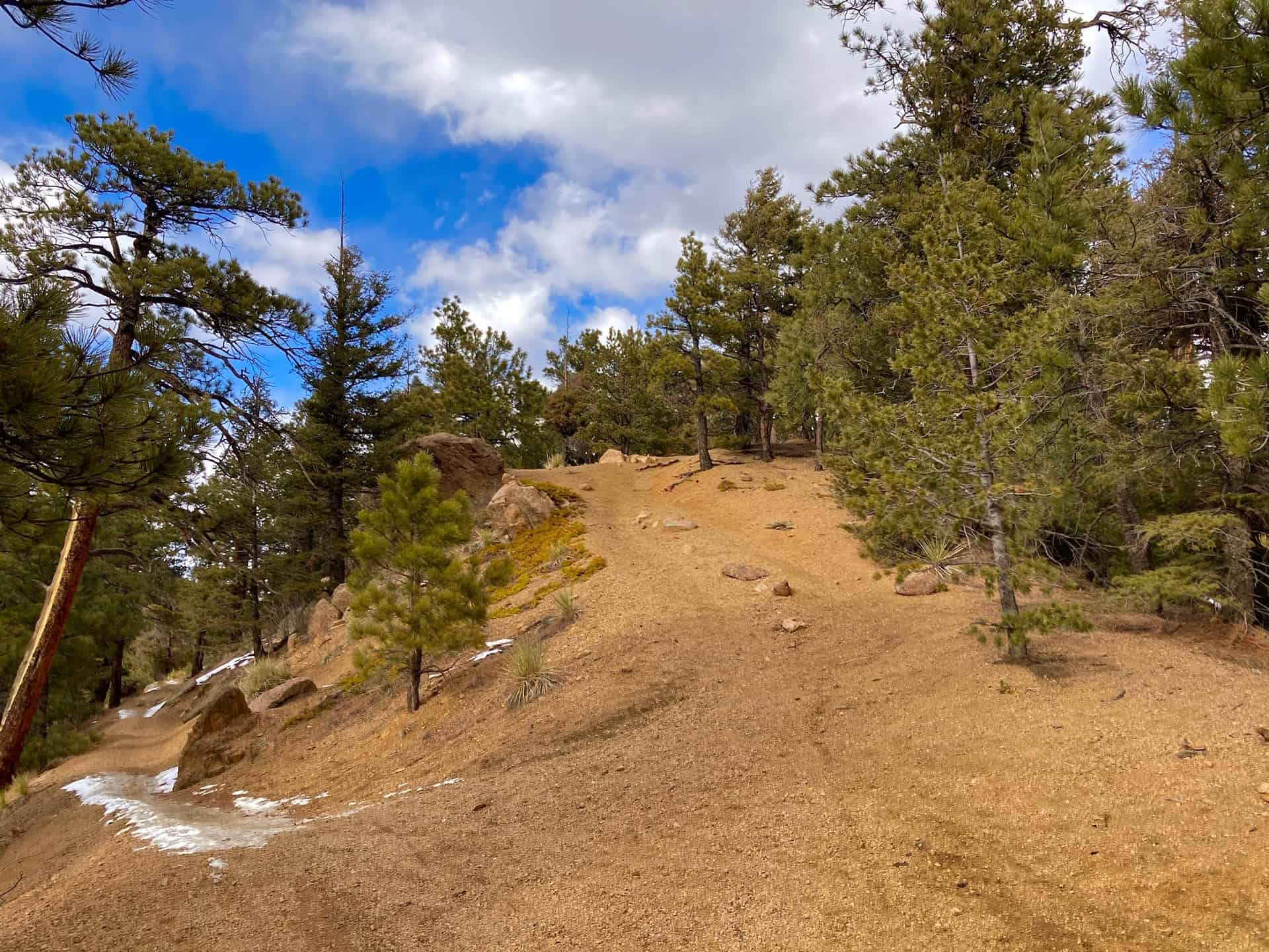 off-route trail to Mt. Buckhorn